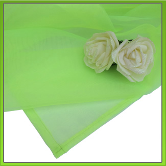 Neon Organza Table Overlay